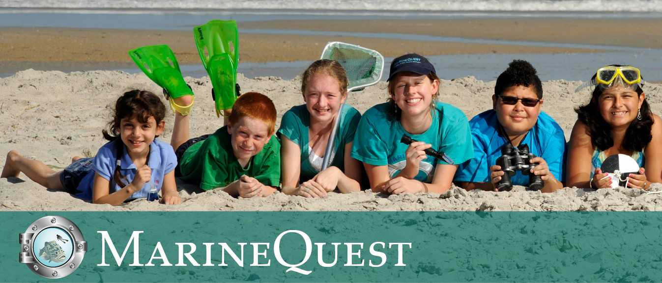MarineQuest Half Day Programs: Ages 4-9 - Youth Programs - Courses - UNCW Community Registration Services